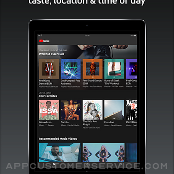 YouTube Music ipad image 2