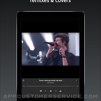 YouTube Music ipad image 3