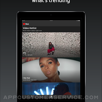 YouTube Music ipad image 4