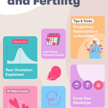 Flo Period Tracker. Ovulation iphone image 1