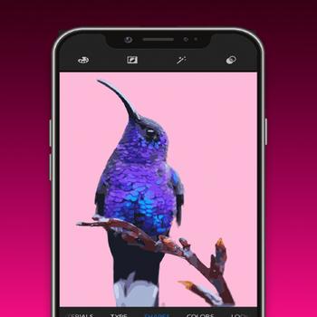 Adobe Capture: Creative Kit iphone image 1