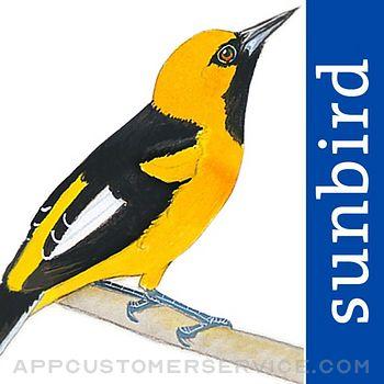 All Birds Ecuador field guide Customer Service