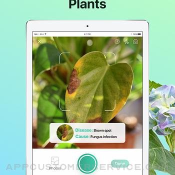 PictureThis - Plant Identifier ipad image 4