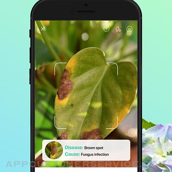 PictureThis - Plant Identifier iphone image 4