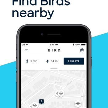 Bird - Be Free, Enjoy the Ride iphone image 2