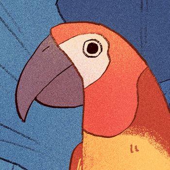 Bird Alone Customer Service