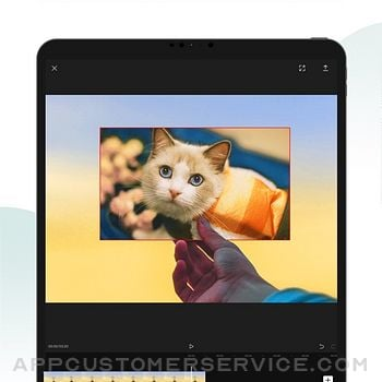 CapCut - Video Editor ipad image 2