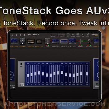ToneStack PRO Guitar Amps & FX ipad image 2