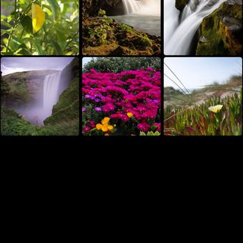 Photo Widget: Pro ipad image 2
