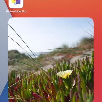 Photo Widget: Pro iphone image 1