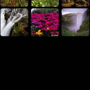 Photo Widget: Pro iphone image 2