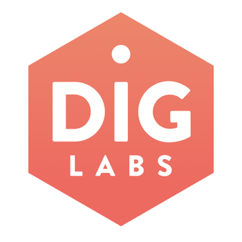 DIG Labs Health Check Customer Service