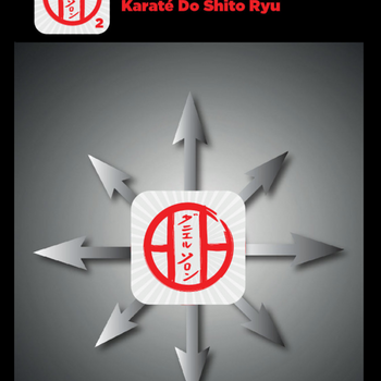 KATAS SHITO-RYU2 ipad image 1
