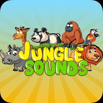 Bingoo Jungle Sounds Customer Service