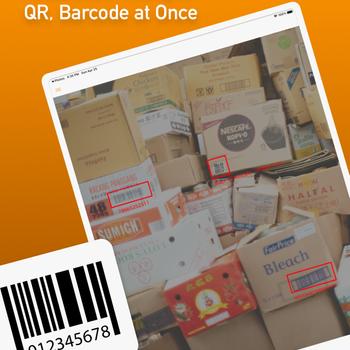 Batch QR Scanner ipad image 1