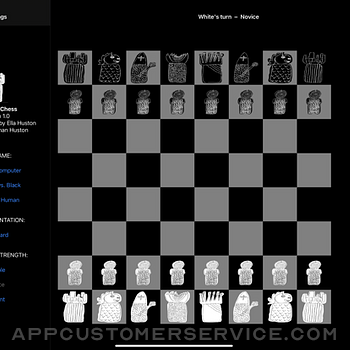 Diamond Chess ipad image 1