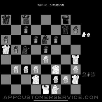 Diamond Chess ipad image 2
