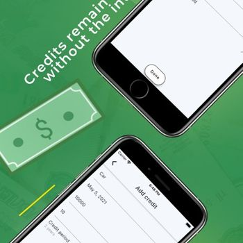 Credit payments calculator iphone image 3