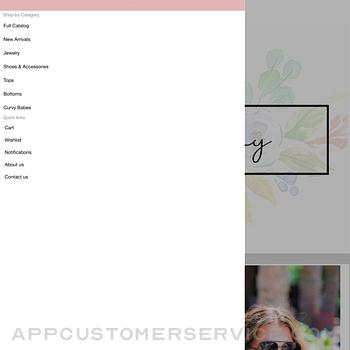Blue Jay Boutique WV ipad image 2