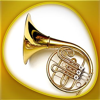 Animals 360 - Instruments Gold Customer Service