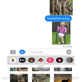 Aussie Meme Stickers iphone image 1