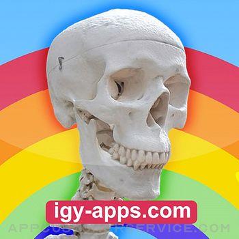 Anatomy AR 4D Customer Service