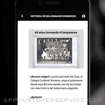 Balonmano Dominicos iphone image 1