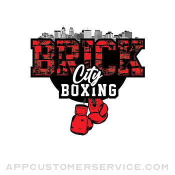 Brick City Boxing ipad image 1