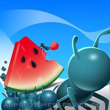 Ants vs Everything Customer Service