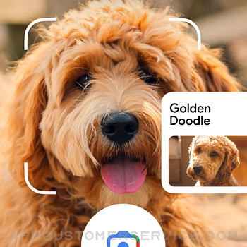 Google iphone image 3
