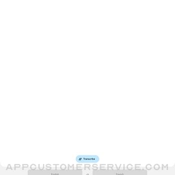 Google Translate ipad image 2