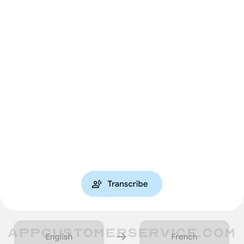 Google Translate iphone image 2