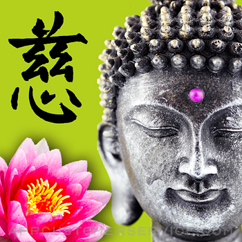 Wisdom Cards - Spiritual Guide Customer Service