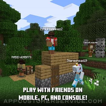 Minecraft ipad image 4