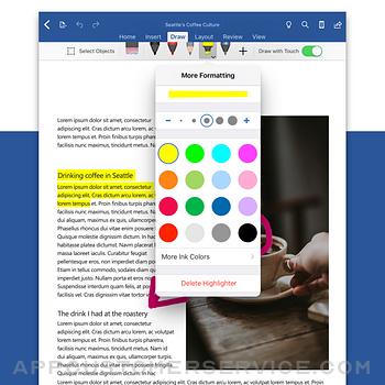 Microsoft Word ipad image 2