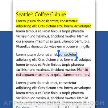 Microsoft Word iphone image 3