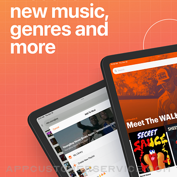 Musi - Simple Music Streaming ipad image 1