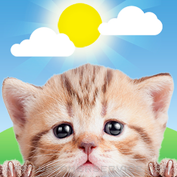 Weather Kitty: Weather + Radar Customer Service
