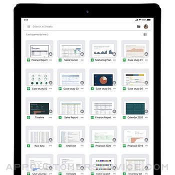 Google Sheets ipad image 4