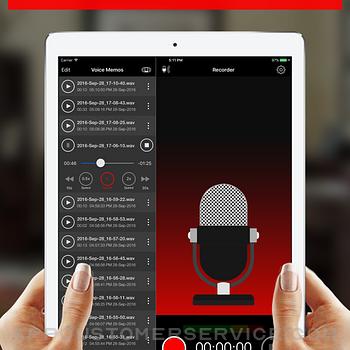 Voice Recorder - Audio Record ipad image 2