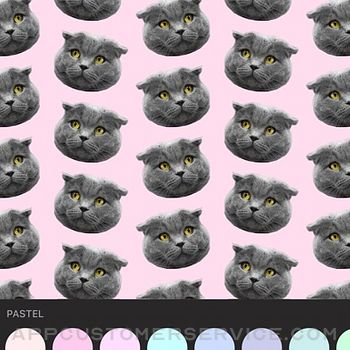 Patternator Video Wallpapers iphone image 4